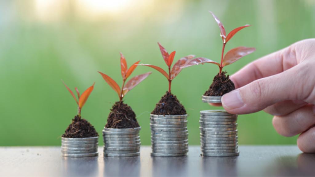 Consultoria para expansão: faça a sua empresa crescer!